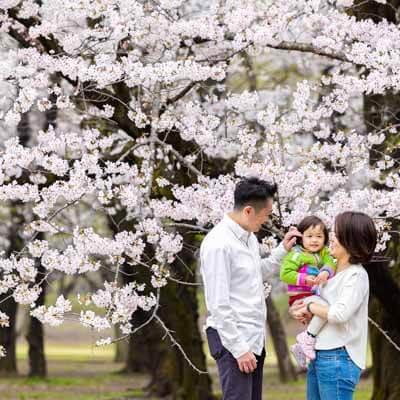 桜(記念写真)_0002